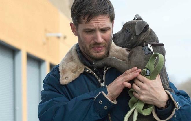 Bộ phim The Drop của tài tử Tom Hardy là một cái tên mới khác trong top ten tuần qua.