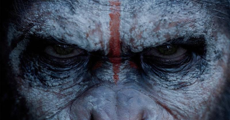 Dawn of the Planet of the Apes được đầu tư kỹ lưỡng hơn phần I và vừa có một màn ra mắt ấn tượng tại các phòng vé.